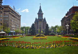 Weekend a Timisoara